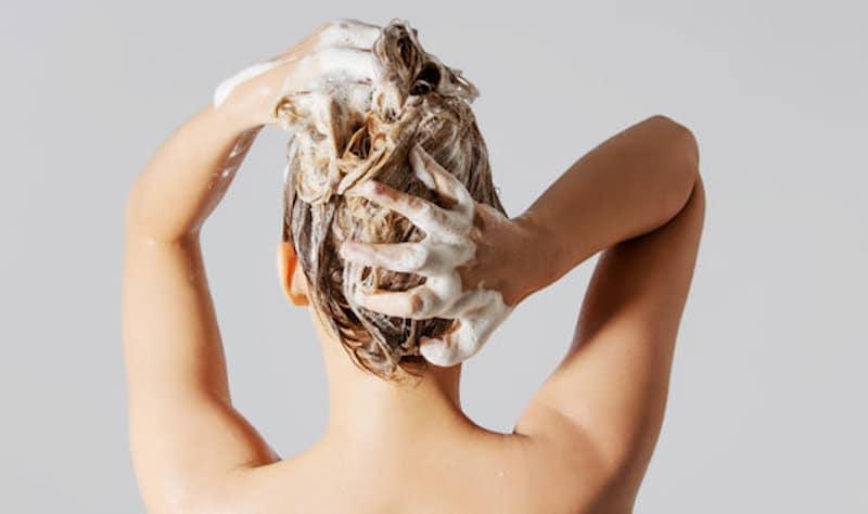 bedste shampoo test
