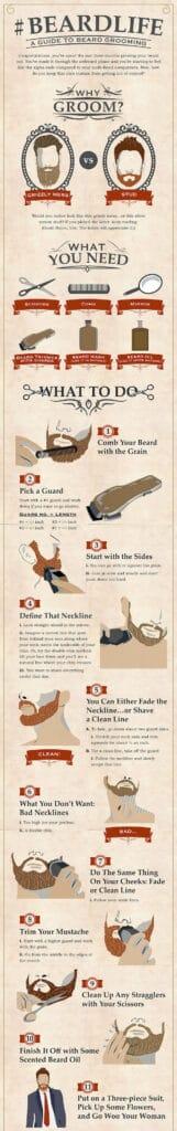 guide til trimning af skægget